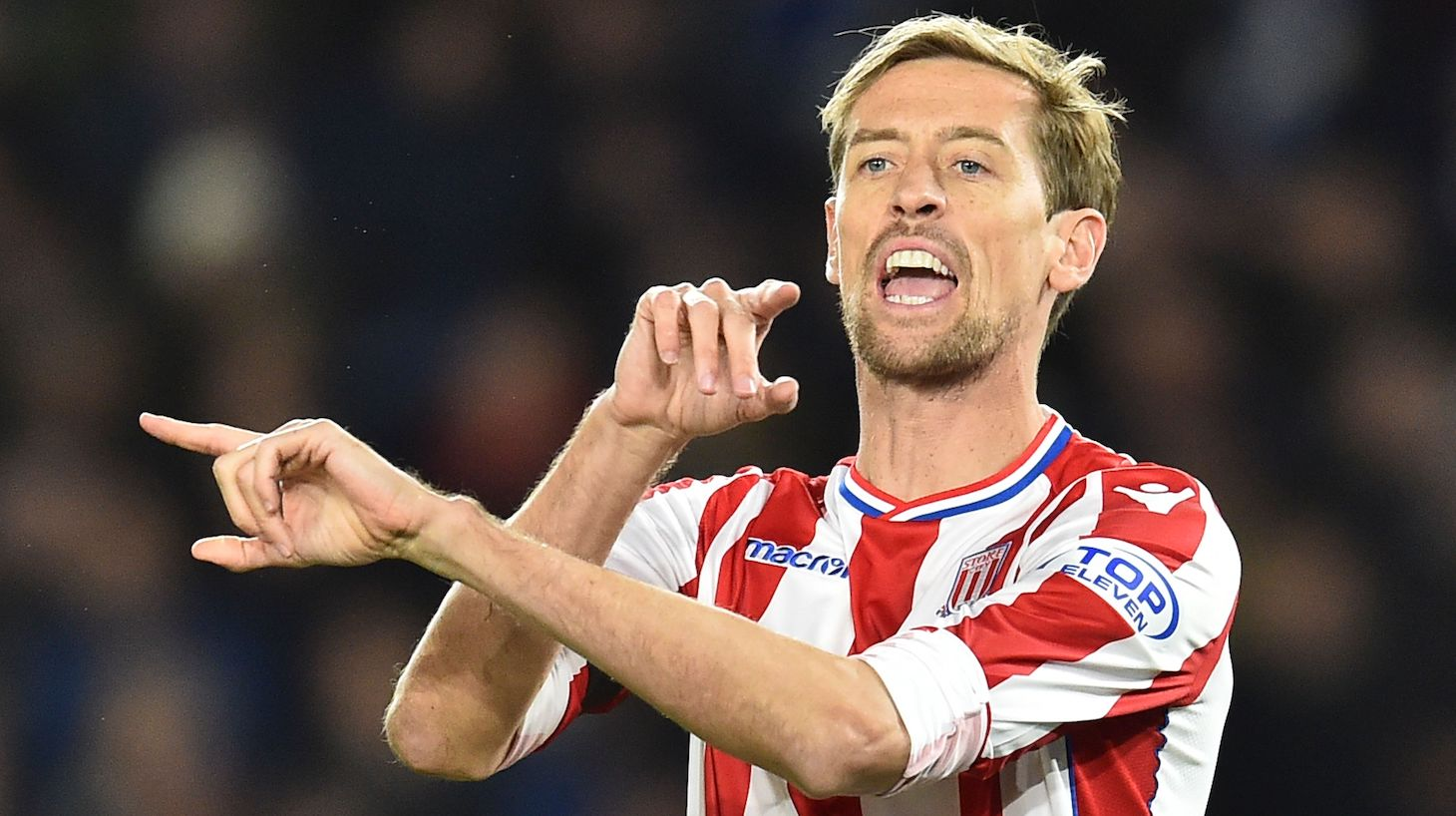 Stoke City's English striker Peter Crouch gives instructions to team-mates as he comes on as a substitute during the English Premier League football match between Brighton and Hove Albion and Stoke City at the American Express Community Stadium in Brighton, southern England on November 20, 2017.