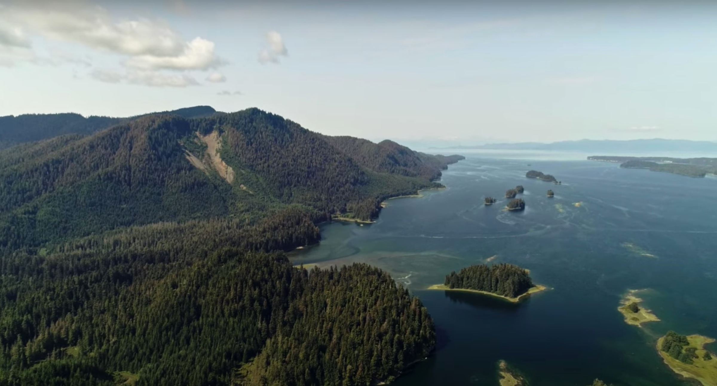 A coastal section of the Tongass National Forest