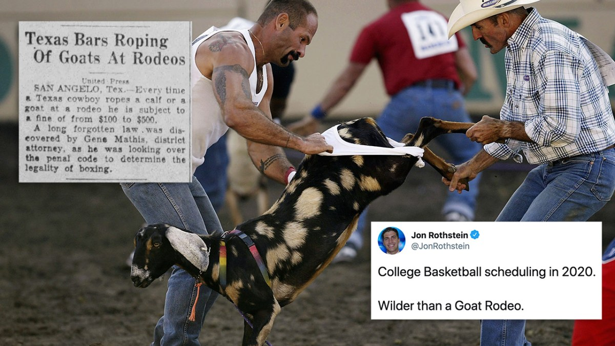 """A goat rodeo, with a tweet from Jon Rothstein on it, it says """"College basketball scheduling in 2020: Wilder than a goat rodeo"""""""