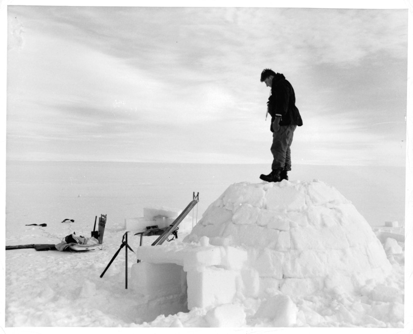 A man is standing on an igloo, in the near and far distance, there is snow for miles and miles in Greenland, 1953.
