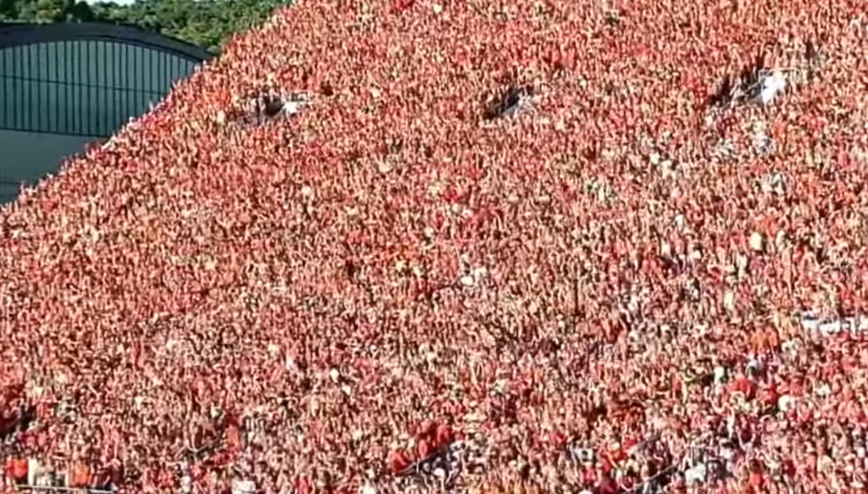 (Vaccinated) fans going berserk at Virginia Tech's Lane Stadium
